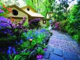 Photo of Linden Gardens Rainforest Retreat