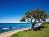 Photo of North Coast Holiday Parks Corindi Beach