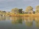Photo of Riverbend Caravan Park Renmark