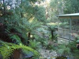 Photo of Myers Creek Cascades Luxury Cottages