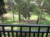 Photo of Eucalypt Deluxe Family Resort Cottage