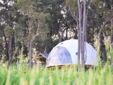 Photo of Mile End Glamping