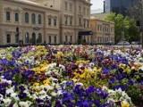 Photo of Adina Apartment Hotel Adelaide Treasury