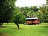 Photo of Daintree Rainforest Bungalows