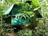 Photo of Daintree Crocodylus Village