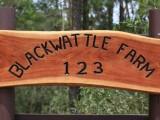 Photo of Blackwattle Farm