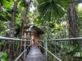 Photo of Daintree Wilderness Lodge