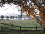 Photo of Mulgoa Valley Guesthouse