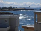 Photo of Shutters by the Sea Kiama