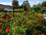 Photo of Wattle Grove Motel Maryborough