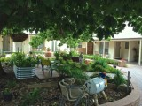 Photo of Hahndorf Oak Tree Cottages