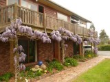 Photo of Wisteria Lodge
