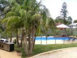 Photo of Koala Tree Motel